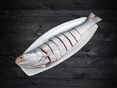 Indian Salmon/Rawas/Maga